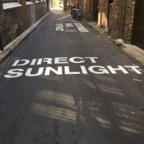 direct-sunlight1.jpg